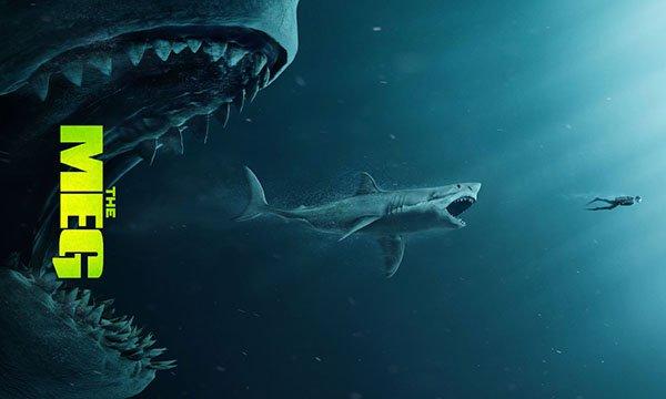 """Ağustosun heyecanı """"dev köpekbalığı"""" oldu"""