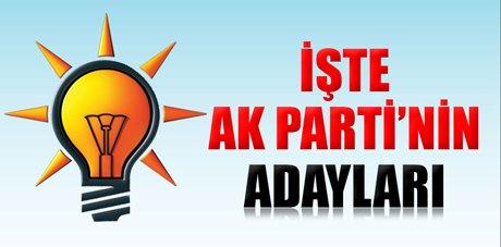 AK Parti'nin il belediye başkan adayları
