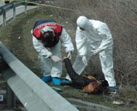 Otobanda iki kadın ceset bulundu