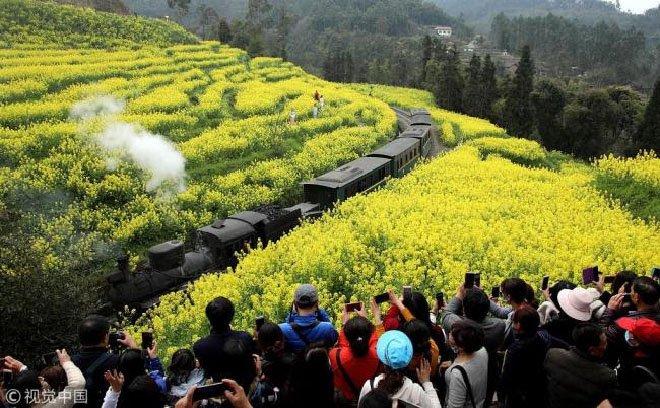 Çin'de 2018'de Orman Turizmi Patlaması