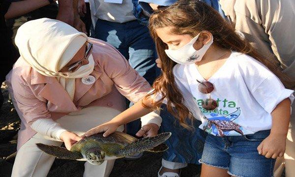 Emine Erdoğan kaplumbağaları denize uğurladı