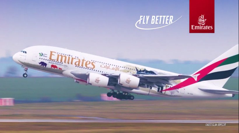 Emirates Grubu Yaban Hayat Taahhüdünü Sürdürüyor