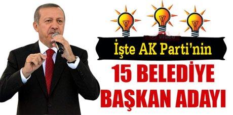 Erdoğan, Başkan adaylarını açıkladı