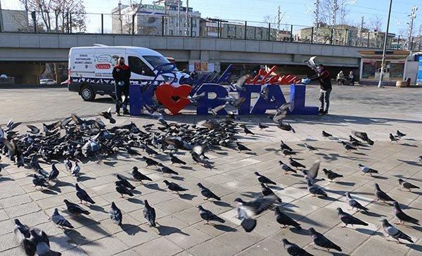 Kartal Belediyesi,kısıtlamada sokak hayvanlarını unutmadı
