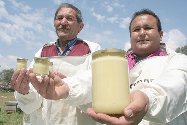 Kilosu 16 bin TL olan arı sütüne koronavirüs ilgisi