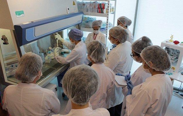Koronavirüs tedavisinde kök hücre umudu