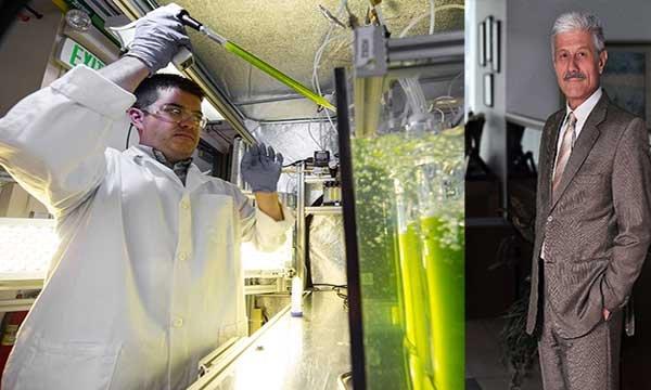 Kullanılmış bitkisel yağlar yakıta dönüşüyor