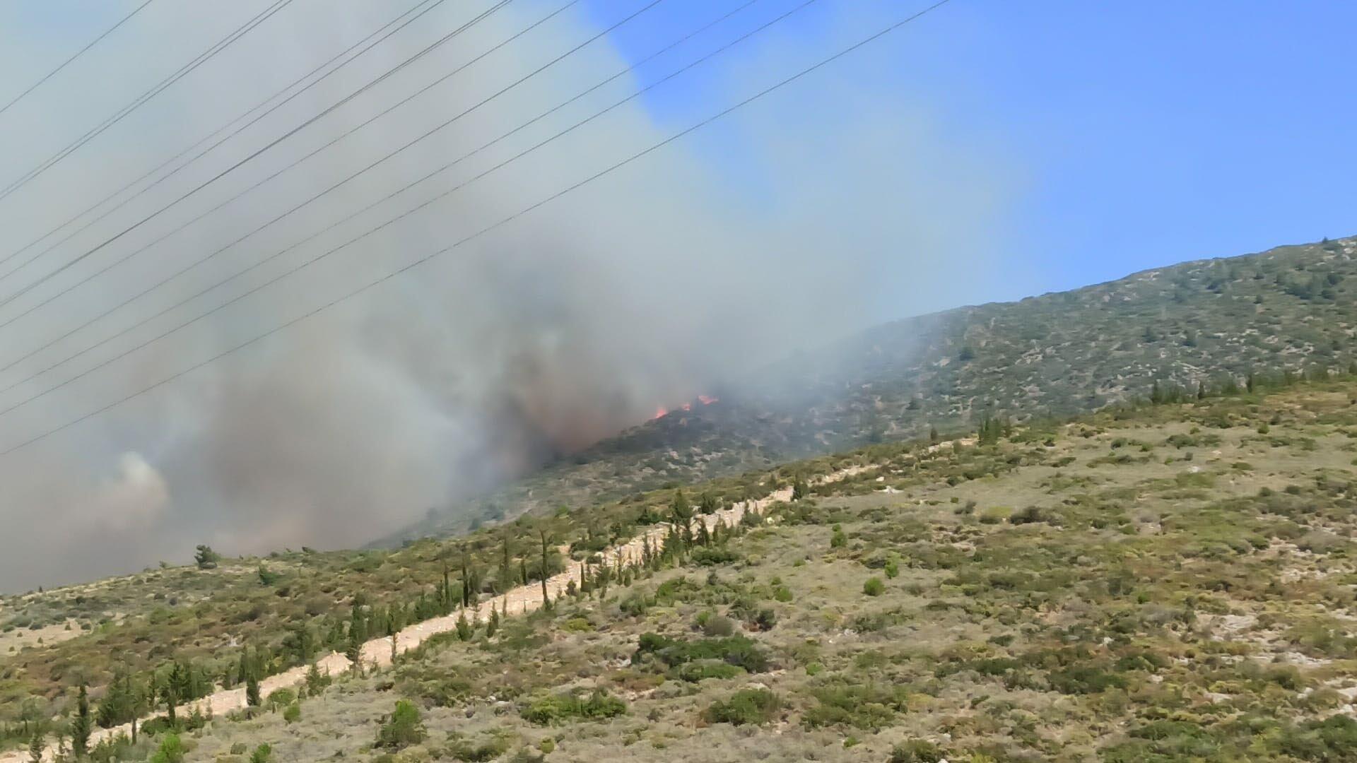Menderes'te orman yangını#video