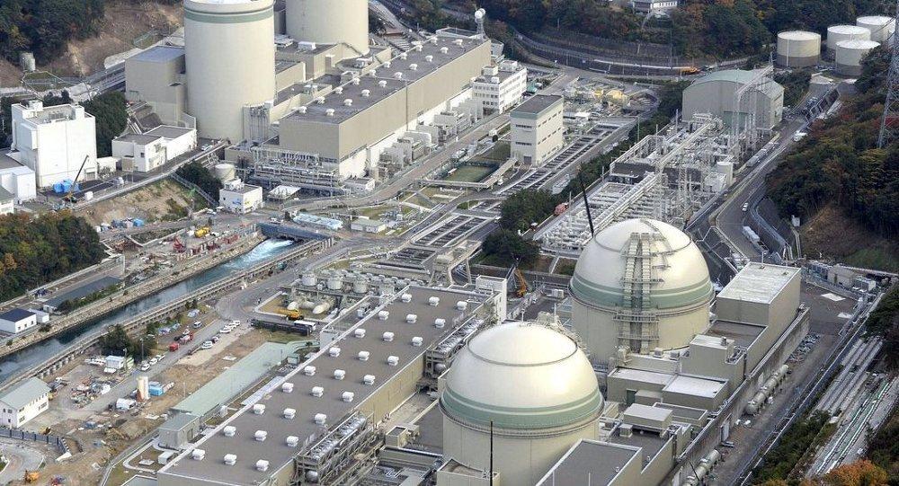 Nükleer felaketin yaşandığı Fukuşima'ya pirinç ekildi