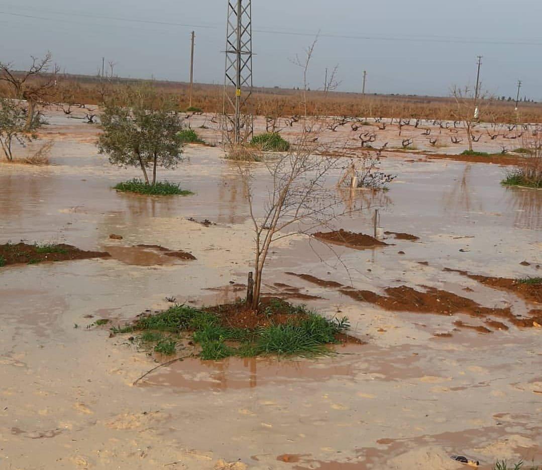 Sel tarım arazilerinde hasara yol açtı