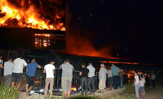 Serik'te soğuk hava ve paketleme tesisinde yangın