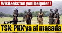 WikiLeaks belgelerinden 'PKK'ya Af' çıkt.