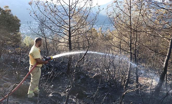 video#Fethiye'de yerleşim yerinde yangın çıktı