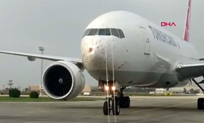 video#Geçen yıl uçaklara 828 kez kuş çarptı